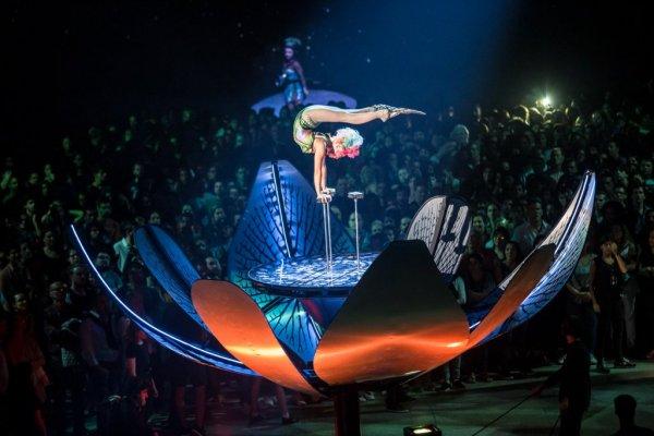 Soda Stereo según Cirque du Soleil (y el mal de los espectadores que no ven)